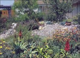 Xeriscape Landscaping Ideas Xeriscape Garden Design Ideas Inspiration Interior Designs