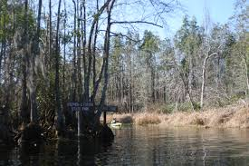 Okefenokee Swamp Map Paddling In The Okefenokee Swamp Life At 60 Mph