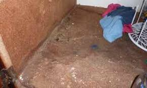 how to fix cabinet bottom how to fix rotted cabinet bottom floor how much sink