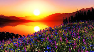 colorful colors sunsets colorful sunset flowers hills lake sky colors sun high