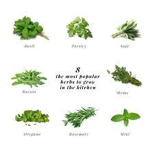 Kitchen Herb Pots