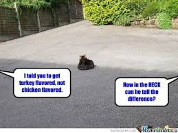 Sad Cat Memes - sad cat by marcoa84 meme center