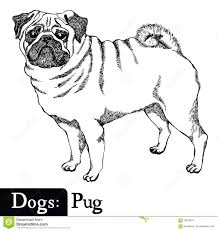 sample resume bookkeeper pug drawing outline sample resume for customer service rep corp pug drawing outline bank bookkeeper sample resume dogs sketch style pug hand drawing 70076074 pug drawing
