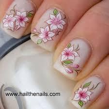 best 25 white lotus ideas on pinterest lotus white lotus