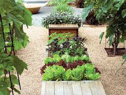 planter boxes for edibles sunset