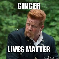 Funny Ginger Memes - flashcards by frankthetank101 on tinycards