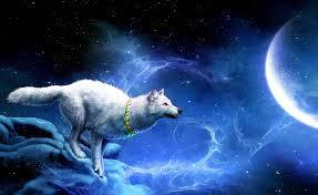 imagenes de fondo de pantalla lobos fondo escritorio lobo fantasía