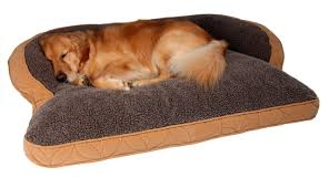 Costco Memory Foam Dog Bed Bedroom Gorgeous Dog Beds Bed Bedding Amazon Orthopedic Right