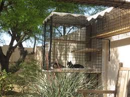 catbitats com catios and outdoor enclosures