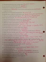100 classification worksheet answers quia class page