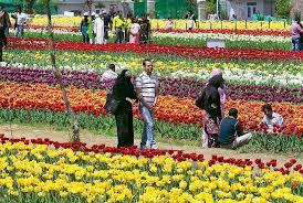 wonderful flower garden in amsterdam the most beautiful gardens in