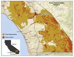 Map Of Carlsbad Ca California Mountain Lions U0027 Genetic Connectivity Dangerously Low