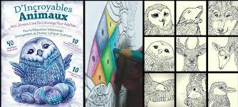 AntiStress le livre de coloriage pour les adultes EdRelaxation4me