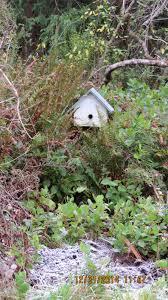 beekeeping adventures in natural beekeeping page 2