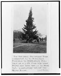 history of swarovski ornaments tree