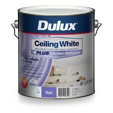Dulux Bathroom Ideas by Dulux White Ceiling Plus Kitchen And Bathroom Paint 4l