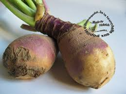 cuisiner rutabaga rutabaga astuces choix cuisson conservation et idées recettes