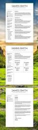 Can Resumes Be 2 Pages Best 25 Professional Resume Design Ideas On Pinterest
