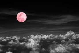 this is the pink moon meaning for april s moon hellogiggles