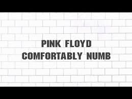 Comfortably Numb Orchestra Complete Guide To Pink Floyd U0027comfortably Numb U0027 Articles