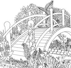 color pages for adults best 25 coloring pages ideas on pinterest colour book
