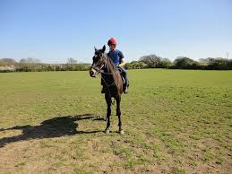 sheena west runners today sports betting tips