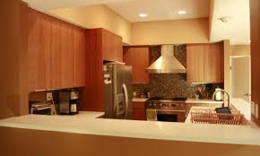 eco kitchen cabinets eco friendly kitchen cabinets living room modern with bamboo cabin