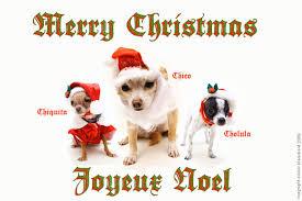 merry et joyeux noel the brandbuilder
