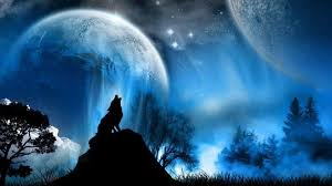 halloween wolf background hd wolf wallpapers wallpaper cave