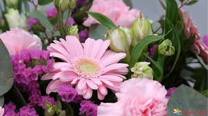 online flowers delivery reasons to choose online flower delivery services bloomsvilla