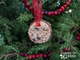 bird seed ornaments garden up green