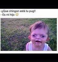 Spanish Memes Funny - best 25 ideas about spanish memes find what you ll love