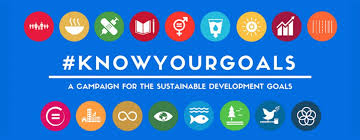 know your goals young people to drive the sdgs implementation