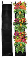 amazon com 8 pocket vertical garden planter living wall