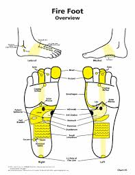 Foot Reflexology Map The Art Of Reflexology Sept Newsletter