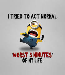 minions comedy movie wallpapers are you trying to act normal funny minion jokes images and
