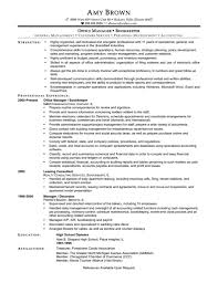 auditor resume sample resume for your job application
