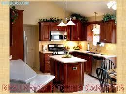 Cabinet Garage Door Kitchen Cabinets Garage Door Refacing Cabinet Supplies Inside