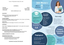 Infographic Resumes Samples Infographic Resume