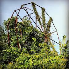 abandoned amusement park there u0027s an eerie abandoned amusement park located 3 5 hours from