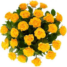 www flowers send bunch of 31 roses to nikolaev ukraine