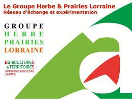 chambre d agriculture lorraine atelier 6 présentation du groupe fourrage régional