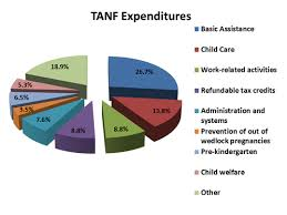 tanf federal safety net
