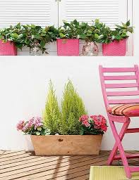 Home Decorating Plants 22 Creative Outdoor Decor Ideas With Colorful Summer Flowers And