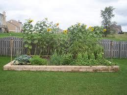 backyard vegetable garden design competition the garden inspirations