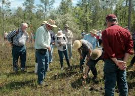 types of native plants secrets of native plants revealed at lecture mississippi state