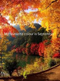 my favourite colour is september fall pinterest favorite color