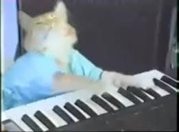 keyboard cat meme wiki fandom powered by wikia