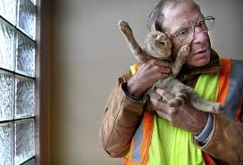 minnesota residents raise money for crossing guard s new cat