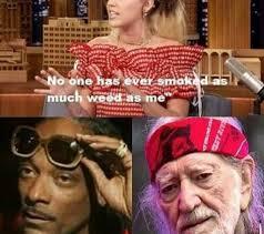 Miley Cyrus Meme - miley cyrus weed memes weed memes